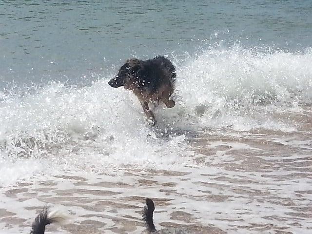 Splashing around is such fun!!